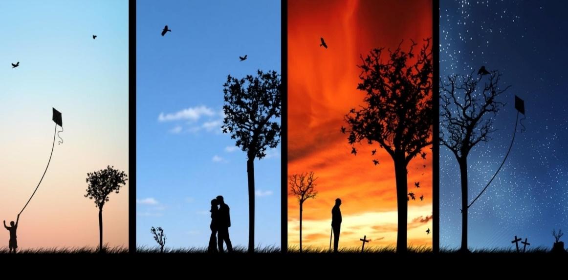 মৃত্যুর সৌন্দর্য ও অমরত্বের জটিলতা