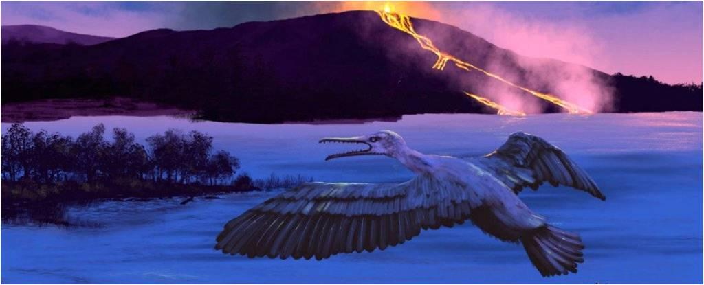 পৃথিবীর ভবিষ্যৎ জলবায়ু সম্পর্কে আগাম তথ্য দিতে পারে সদ্য আবিষ্কৃত পাখিটি