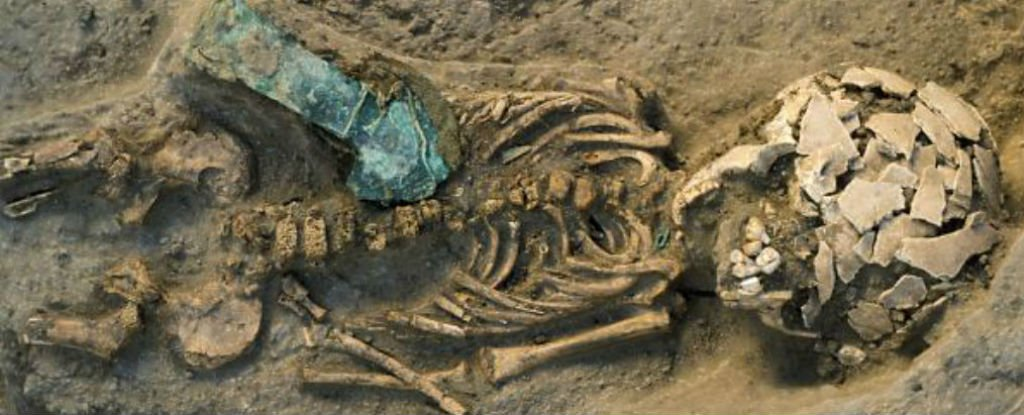 ফসিলবিহীন ২৪ লক্ষ বছরের পুরোনো ডিএনএ উদ্ধার?