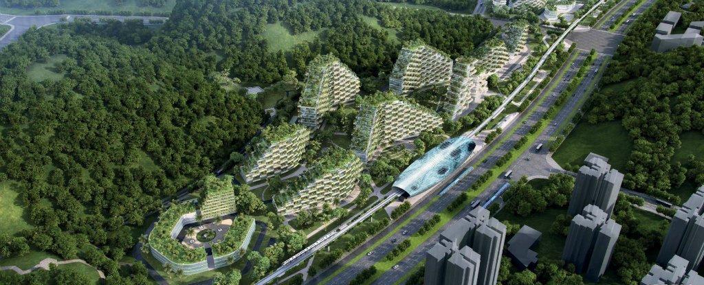 বিশ্বের প্রথম 'বন শহর' তৈরী হচ্ছে চীনে