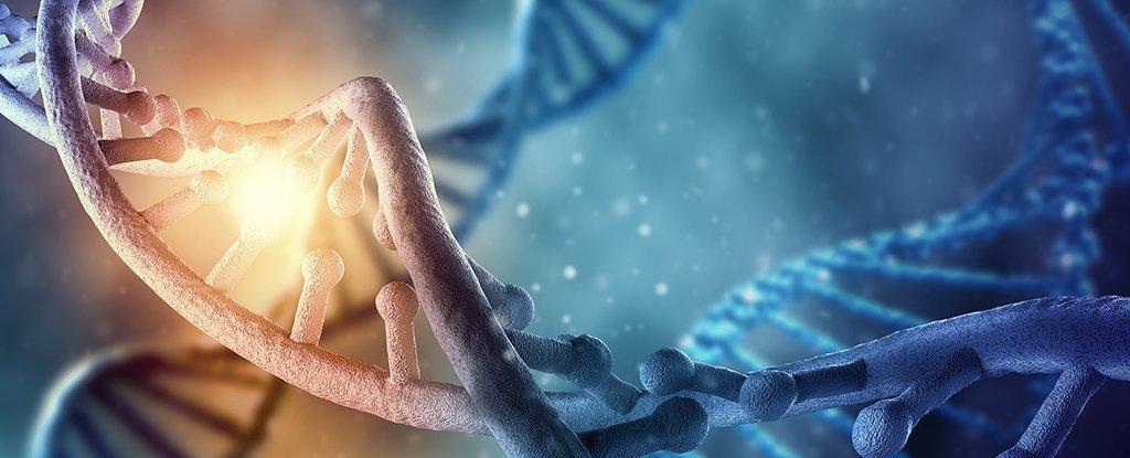 শৈশবকালীন অভিজ্ঞতা স্থায়ীভাবে ডিএনএ বদলে দিতে পারে
